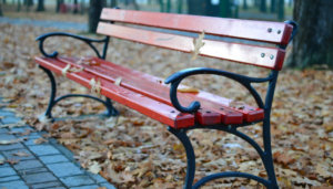 How to Get a Killer Workout When You Only Have a Park Bench